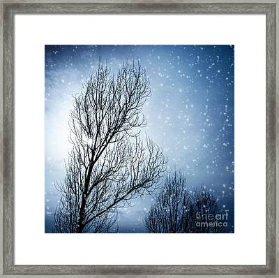 Aged Tree In Winter Framed Print by Anna Om