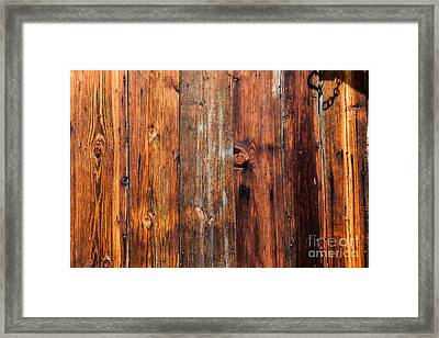 Framed Print featuring the photograph Aged Wood by Charles Lupica