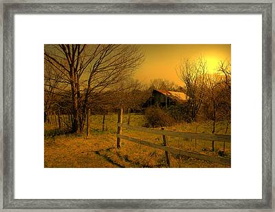 Ageing Gracefully Framed Print by Nina Fosdick