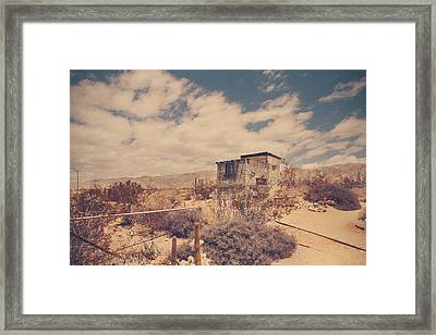 Ageless Framed Print by Laurie Search