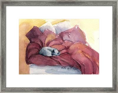 Aggie's Spot Framed Print