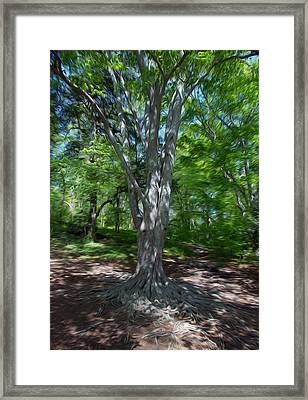Framed Print featuring the digital art Aging Gracefully by Kelvin Booker