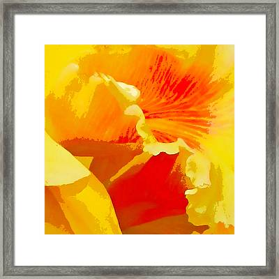 Aglow Framed Print