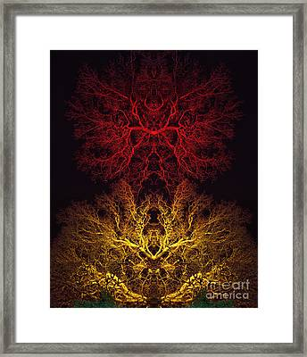 Agni Framed Print by Tim Gainey