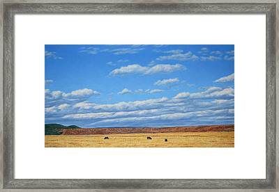 Grazing Framed Print by James W Johnson