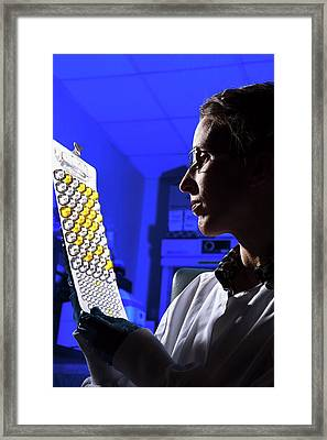Agricultural Bacteria Research Framed Print