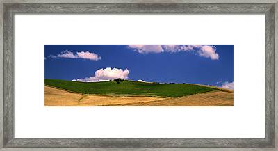 Agricultural Field, Ronda, Malaga Framed Print by Panoramic Images