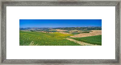 Agricultural Fields, Ronda, Malaga Framed Print by Panoramic Images