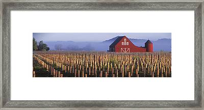 Agriculture - A New Red Barn Stands Framed Print by Randy Vaughn-Dotta