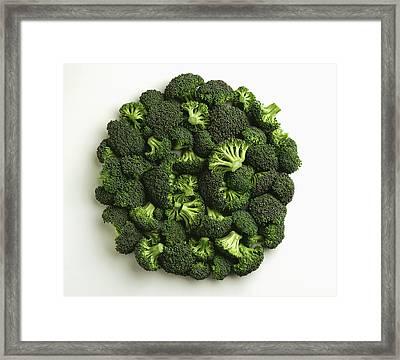 Agriculture - Broccoli Florets, Large Framed Print