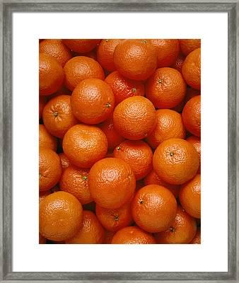 Agriculture - Field Of Tangerines Framed Print by Joel Glenn