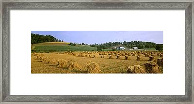Agriculture - Harvested Oats In Shocks Framed Print by Timothy Hearsum