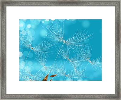 Air Blow Framed Print by Veronica Minozzi