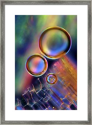 Air Bubbles On Plant Tissue Framed Print by Marek Mis
