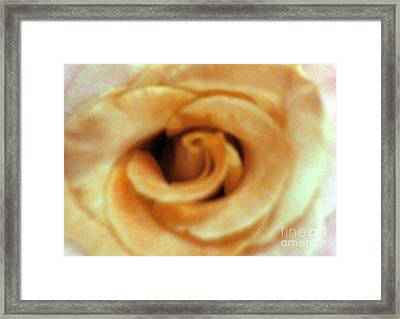 Airbrush Rose Framed Print
