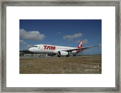 Airbus A320 From Tam Airlines Taken Framed Print