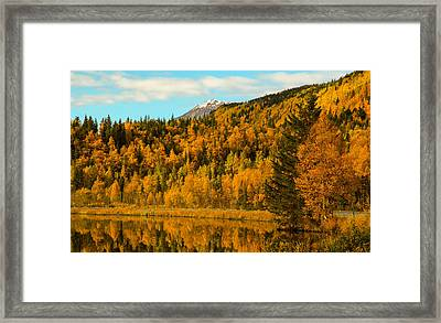 Ak Fall Framed Print