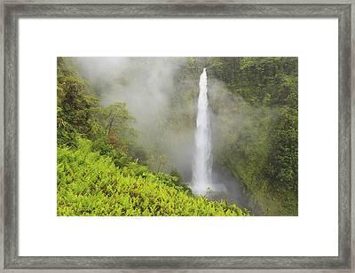 Akaka Falls Akaka Falls State Park Framed Print by Stuart Westmorland
