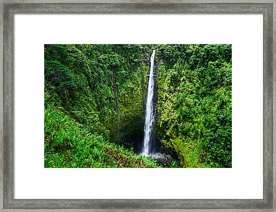 Framed Print featuring the photograph Big Island - Akaka Falls by Francesco Emanuele Carucci