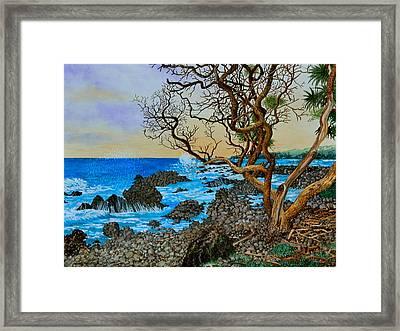 Akini Kinau Shoreline Maui Framed Print