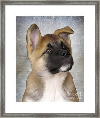 Akita Puppy Framed Print