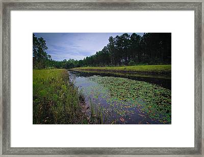 Framed Print featuring the photograph Alabama Country by Julie Andel