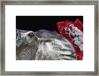 Alabama Football Mascot Framed Print by Kathy Clark