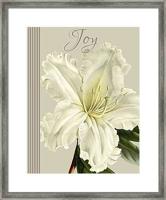 Alabaster Blossoms E Vertical 2 Framed Print by Gail Fraser
