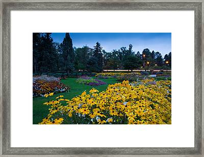 Alamo Placita Park Framed Print by Rockin' Media