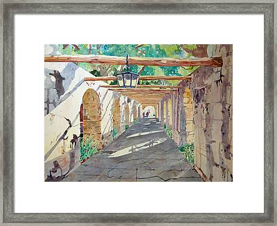Alamo Walkway Framed Print by Terry Holliday