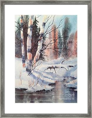 Alaska Birch II Framed Print by Teresa Ascone