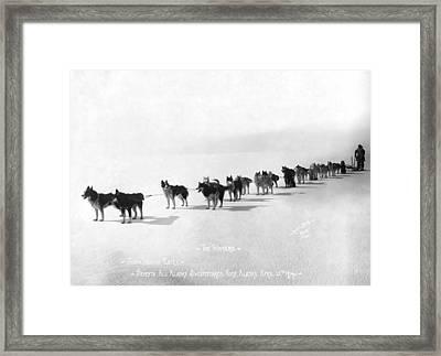 Alaska Champion Dog Sled Team 1914 Framed Print by Daniel Hagerman