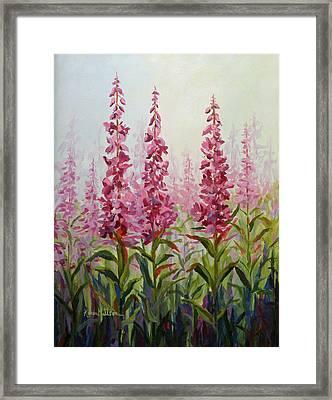 Alaska Fireweed Framed Print by Karen Mattson
