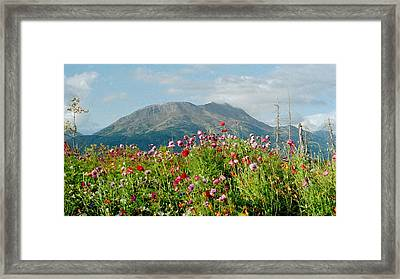 Alaska Flowers In September Framed Print