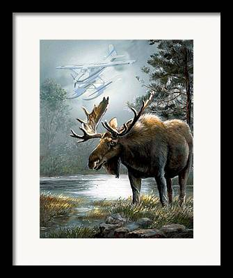 Moose With Imagery Framed Prints