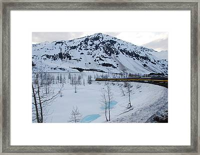 Alaska Train To Denali Framed Print