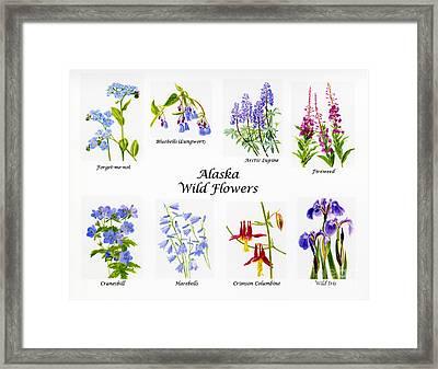 Alaska Wild Flower Poster Framed Print by Sharon Freeman