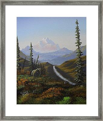 Alaskan Brown Bear Framed Print