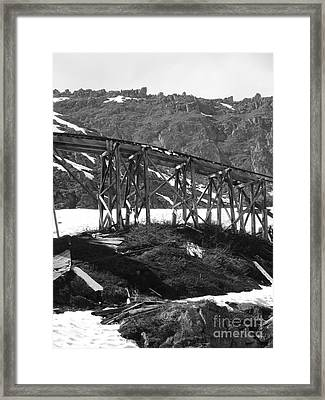 Alaskan Mine Track Framed Print by Dani Abbott