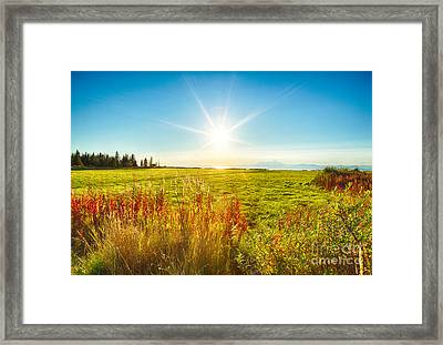 Alaskan Sunburst Framed Print by Paul Karanik