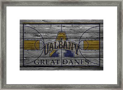 Albany Great Danes Framed Print by Joe Hamilton