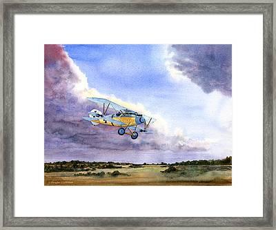 Albatros Framed Print