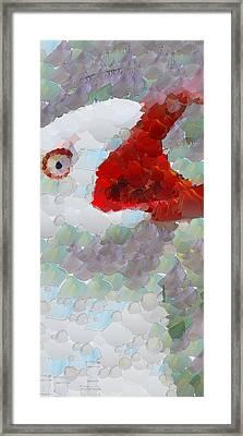 Albatross Framed Print by Georgi Dimitrov