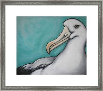 Albatross Framed Print by Jan Morrison