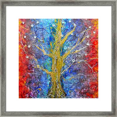 Albedo Tree Of Life 8 Framed Print by Regina Valluzzi