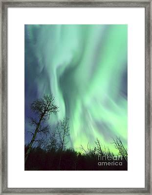 Alberta Aurora Framed Print