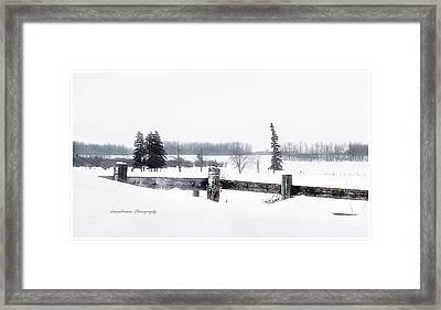 Alberta Winter Wonderland Framed Print by Donna Brown