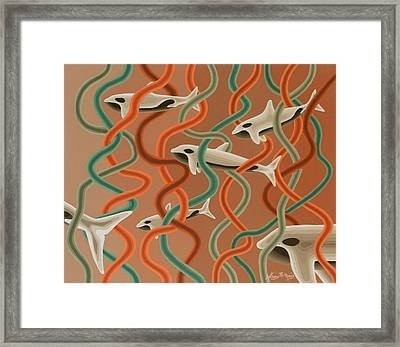 Albino Party Pod Framed Print by Anthony Morris