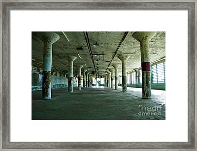 Alcatraz 5 Framed Print by Micah May