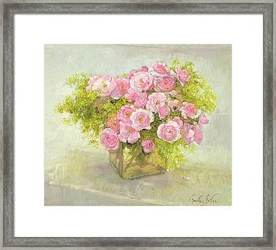 Alchemilla And Roses Framed Print by Timothy Easton